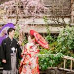 京都祇園にて桜和装ロケーション前撮り